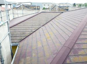 築17年の東京都北区のご自宅で屋根材はスレートコロニアルです。初の塗装リフォームなので、全体的にコケやカビが発生し、特に日照が少ない北面に多発。