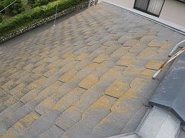 築18年の東京都豊島区のご自宅です。一度も塗装をされていないとのことで、コケやカビが全体的に大量に発生。